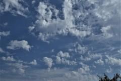 Núvols 147 - Jordi Sacasas