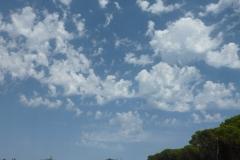 Núvols 113 - Jordi Sacasas