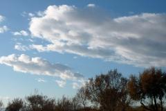 Núvols 64 - Jordi Sacasas